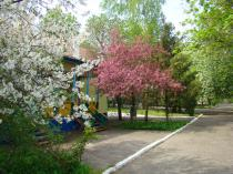 """база отдыха """"Радуга"""" цветущая территория"""